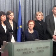 Matjaž Nemec na NK o noveli kazenskega zakonika