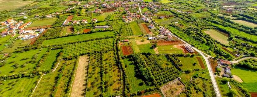 Kmetijska zemljišča in naselja