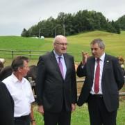 Hogan in Židan v Sloveniji
