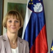 Tanja Strniša - komentar