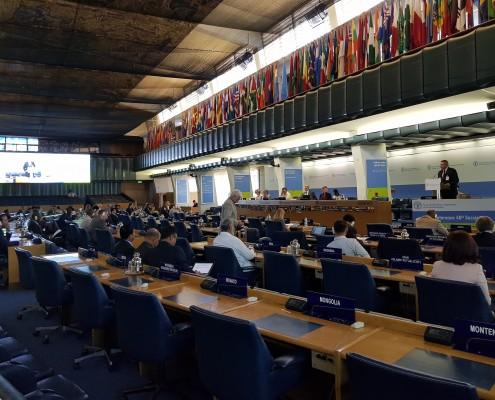 Židan na zasedanju FAO v Rimu 02
