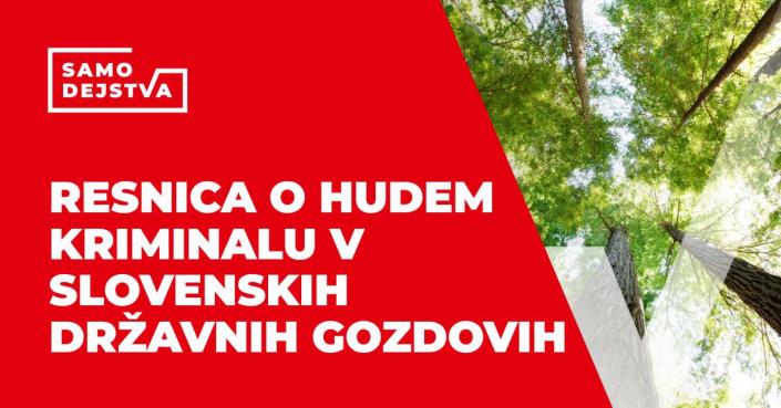 SamoDejstva: Resnica o hudem kriminalu v Slovenskih državnih gozdovih